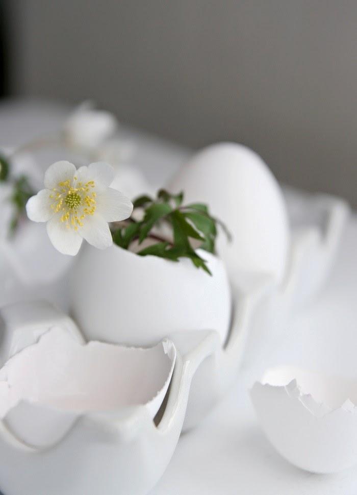 eggekartonger til salgs